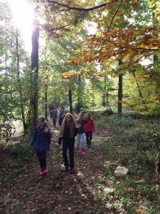 11. 10. 2017 – 4. razred: naravoslovni dan