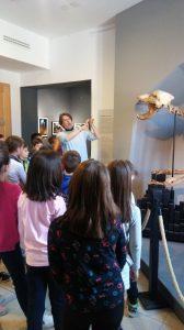 1. 4. 2019 – 3. r: Naravoslovni dan v muzeju