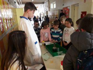 8. 1. 2020 – Učenci predstavili svoje praktično delo